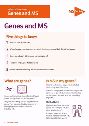 Picture of Genes and MS